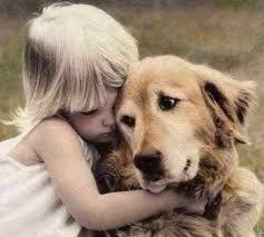 собака друг человека, домашнее животное, член семьи , домашние питомцы