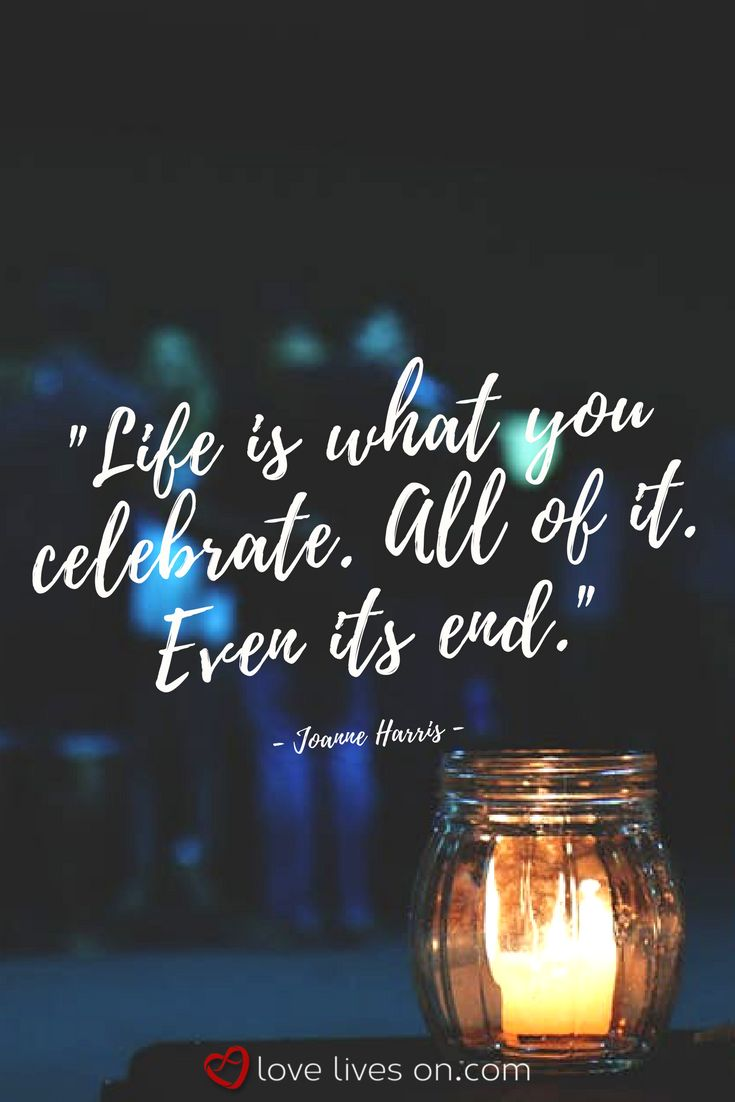 A Quote About Life Best 25 Celebrate Life Quotes Ideas On Pinterest  Celebrate Life