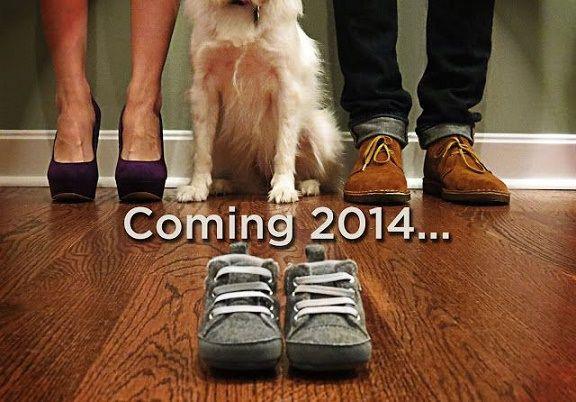 Orgullosos perros anunciando que se convertirán en herman@s mayores ⋮ Es la moda