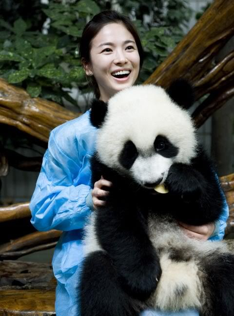 Hold a panda.