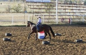 Barrel Racing: Control Your Horse's Speed with Michele McLeod (article in Horse & Rider)