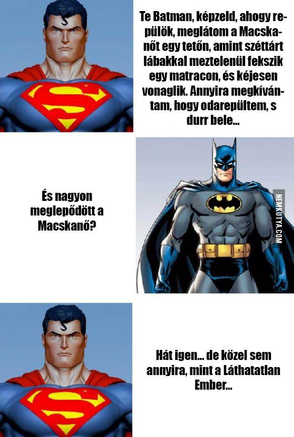 Batman, Superman és Macskanő