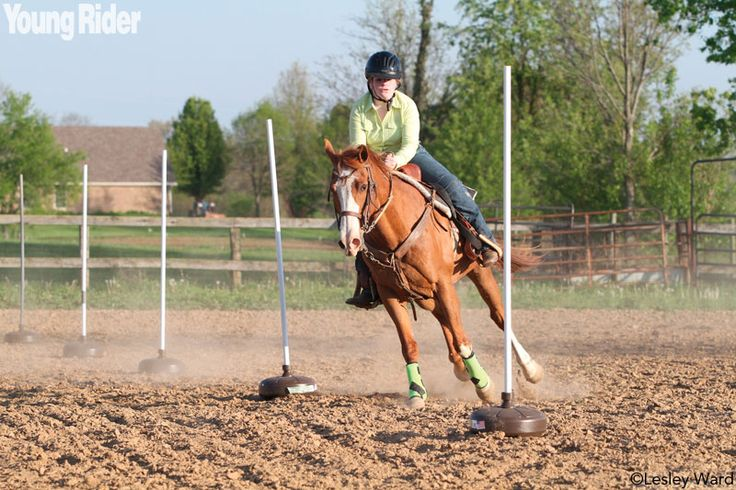 Try these exercises with your horse to improve your pole bending times.