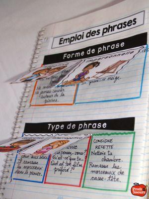 Cahier interactif: Organisation et cohérence du texte par P&S
