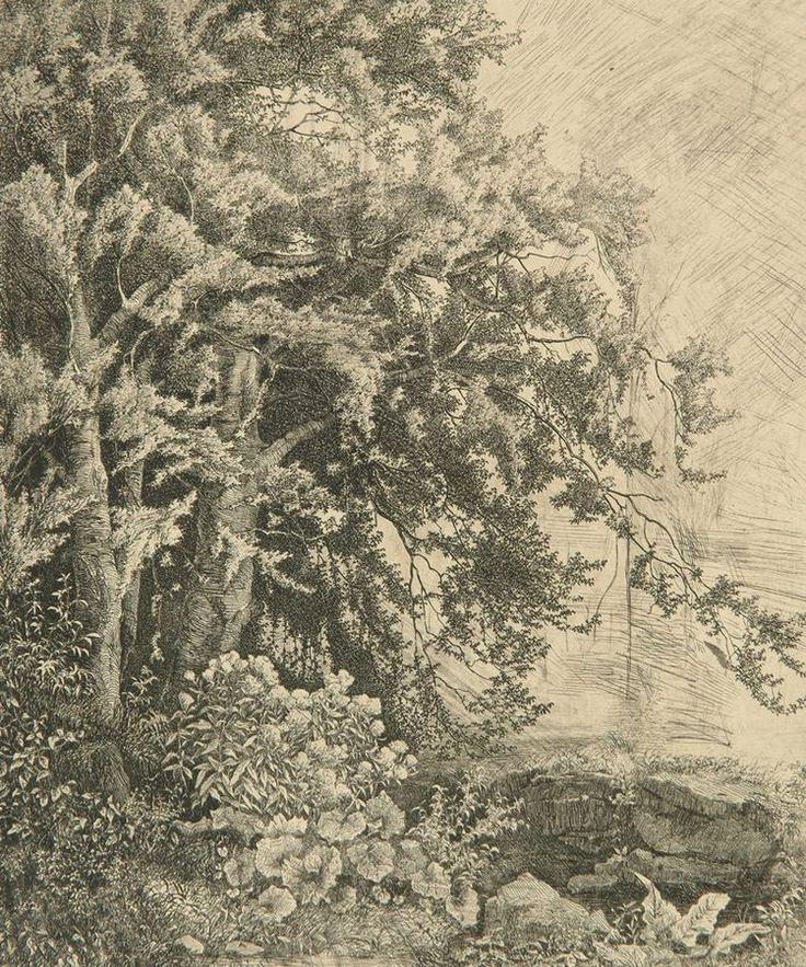 MAŘÁK Julius   Duby v Rakovici (Na pokraji lesní divočiny), 1860   itching, paper, 26 × 22 cm