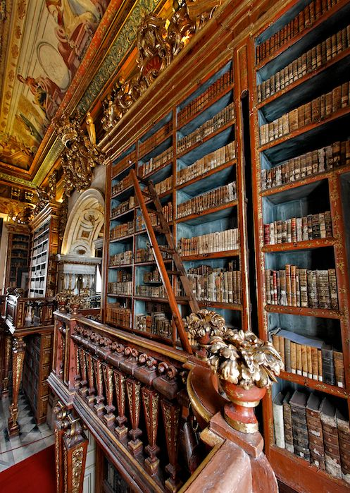 Internal view of the the Joanina Library (Biblioteca Joanina), the Baroque library of the University of Coimbra #books #library #libri #biblioteca #livres #bibliotheque #interiordesign - More wonders at www.francescocatalano.it