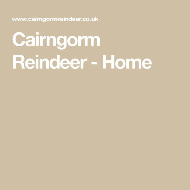 Cairngorm Reindeer - Home