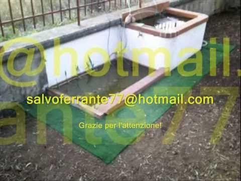 Vasca per Pesci con Fontanella e Laghetto.wmv