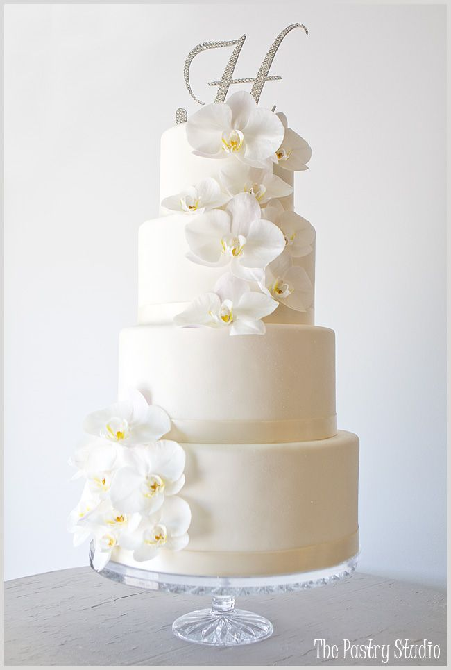 all white wedding cake designs 25 best ideas about orchid wedding cake on 10674