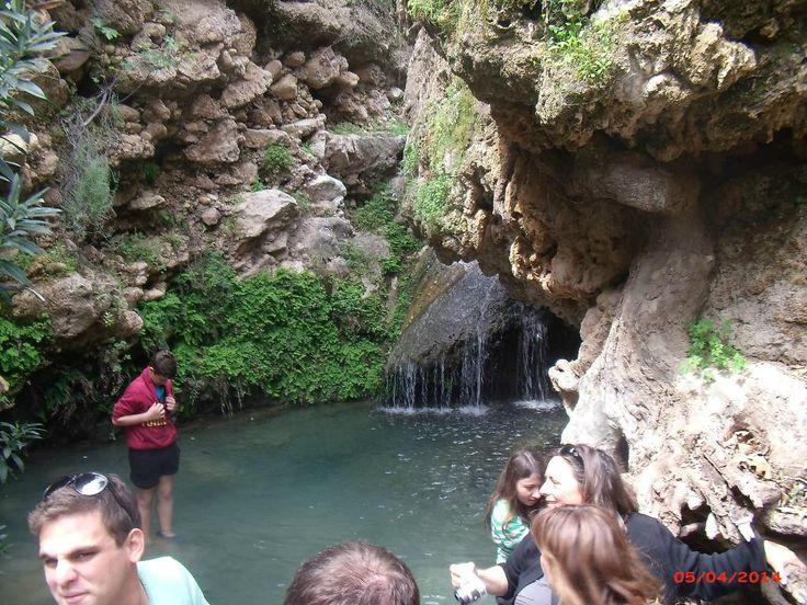 Jungle of Rhodes - Archangelos - Beoordelingen van Jungle of Rhodes - TripAdvisor