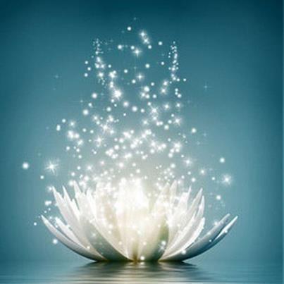 "buddhabe: "" lotus art """