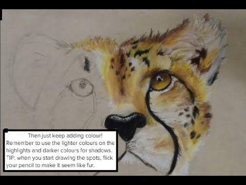 Dit filmpje heb ik gebruikt om mijn cheetah te tekenen.