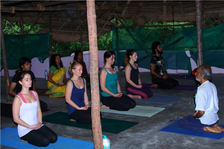 shanti yoga school is one of the best yoga school in kerala india Certified by Yoga Alliance. Course offering 200 hour and 500 hour yoga teacher training course and also offering Ayurveda Massage ...