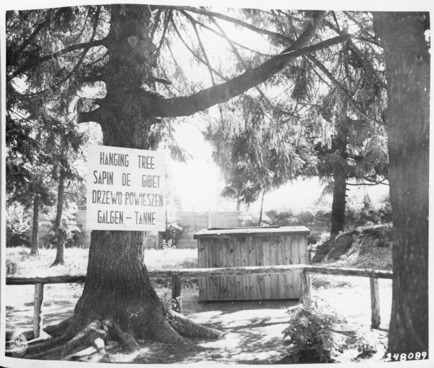 View of a tree in the Dachau concentration camp, located near the crematorium, where prisoners were hanged. A sign in four languages identifying how it was used is posted on the tree, July 1, 1945.  Prisoners could be sentenced to execution for reasons including planning an escape, passing intelligence outside the camp or gathering weapons. The killings were often carried out in front of assembled prisoners.
