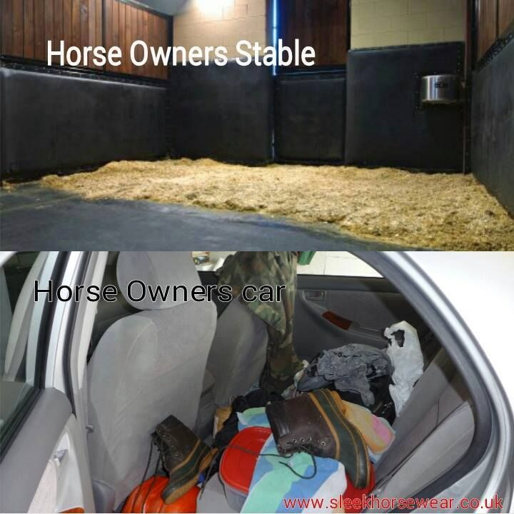 stable vs car