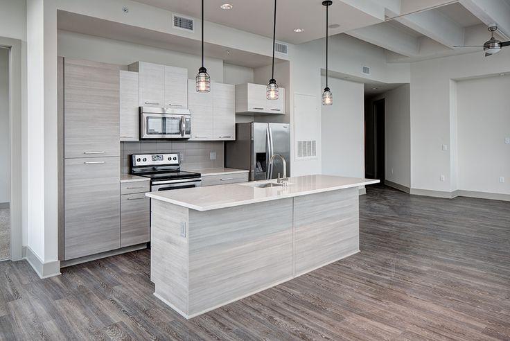 Atlanta Apartments: The Ultimate Renters Guide - http://freshome.com/atlanta-apartments/