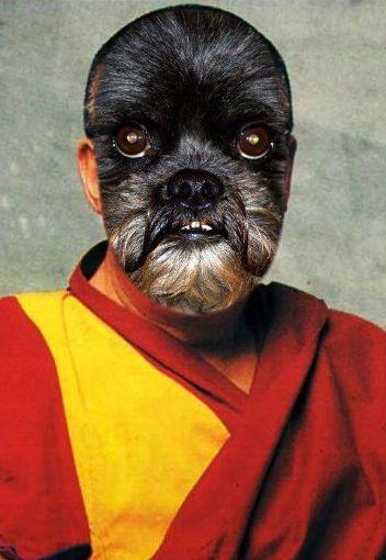 Marmie Lama