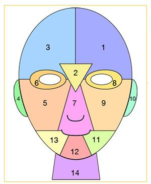 "Facial Mapping: You can tell a lot about the health or your body simply by looking at your face. Parts of the face correspond directly to different parts of the body (internal organs). The location of acne spots on your face can give you an indication of their underlying cause. By analyzing where you get pimples and ""mapping"" where acne pops up, you can help prevent zits from forming."