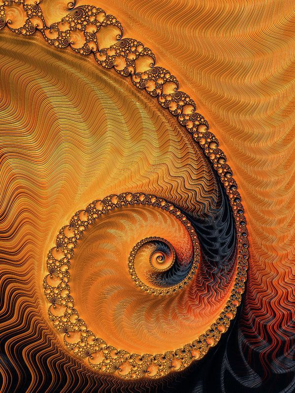 Orange Spiral Print for sale. Fractal Art with beautiful warm colors (orange, brown, black). Available as poster, framed print, metal, acrylic or canvas print. Art for your Home Decor and Interior Design needs by Matthias Hauser.