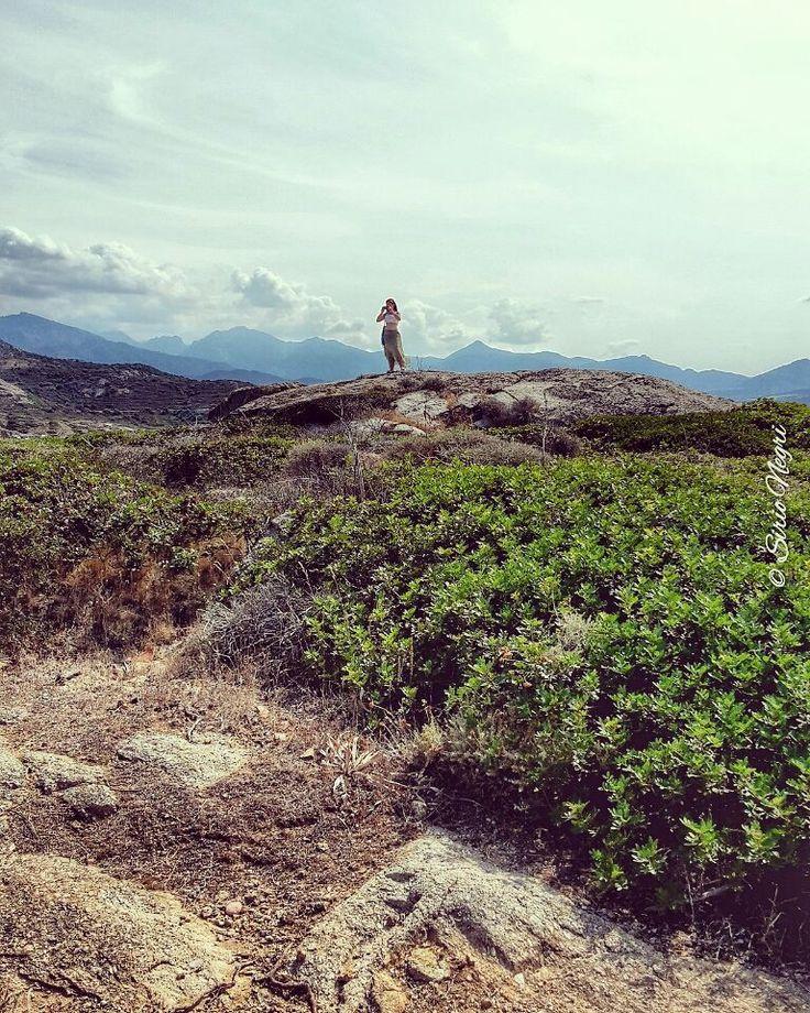 Al centro del mondo. Le Roche Corsica