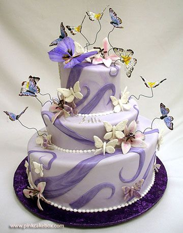 Adorable butterfly cake ♥