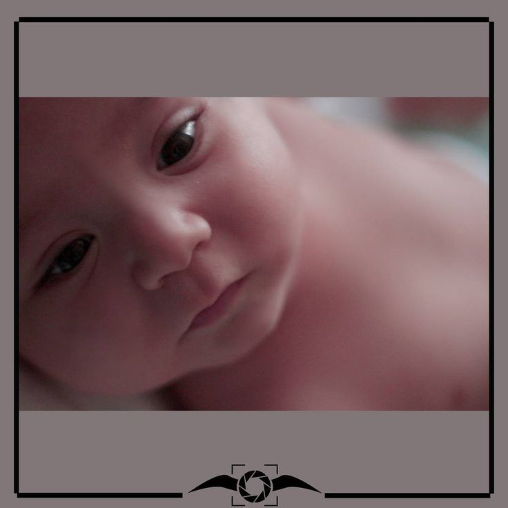 hoşgeldin bebek,  yaşama sırası sende ���� . . . . . . . . . .#vogue #sanat #tasarim #art #denizlisanat #kişiyeözel #düğün #nişan #doğum #bebek #mezuniyet #organizasyon #babyphotography #wedding #çamlık #denizli #canon #instawedding #instababy #instagraduation #igzaman #en_iyi_kare #ig_turkey #model�� http://turkrazzi.com/ipost/1515313075539383145/?code=BUHeTa3B5Np