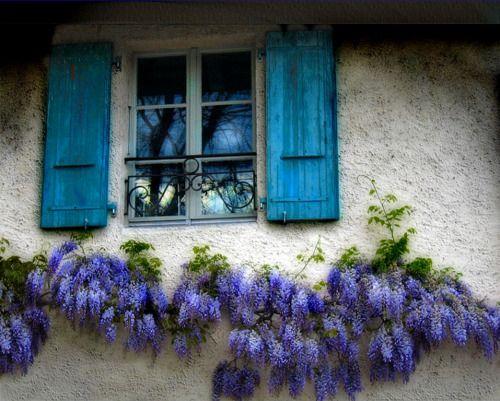 Decorative French Window