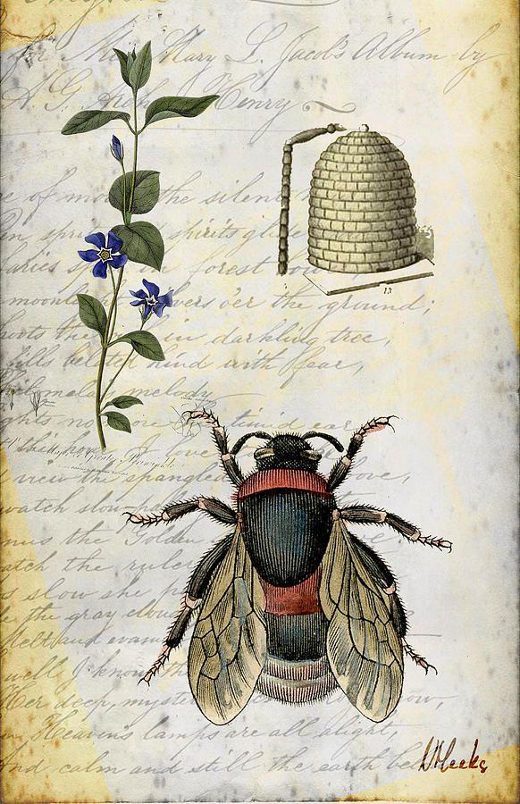 Bee Flower Hive  Digital Art