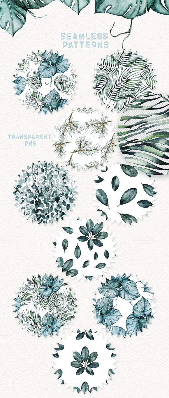 Watercolor Plants - Illustrations