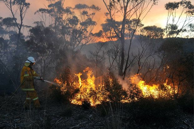 The state of New South Wales (NSW) has been badly hit by the bushfires after the hottest September on record and has declared a state of emergency.