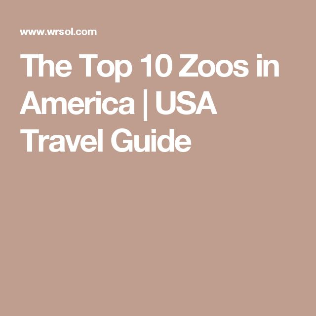 The Top 10 Zoos in America | USA Travel Guide