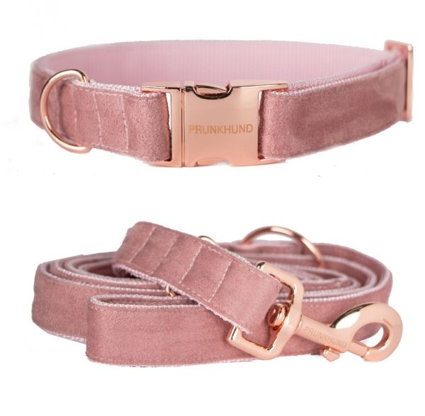 Rose Gold Dog Collar And Leash Set Handmade In Germany
