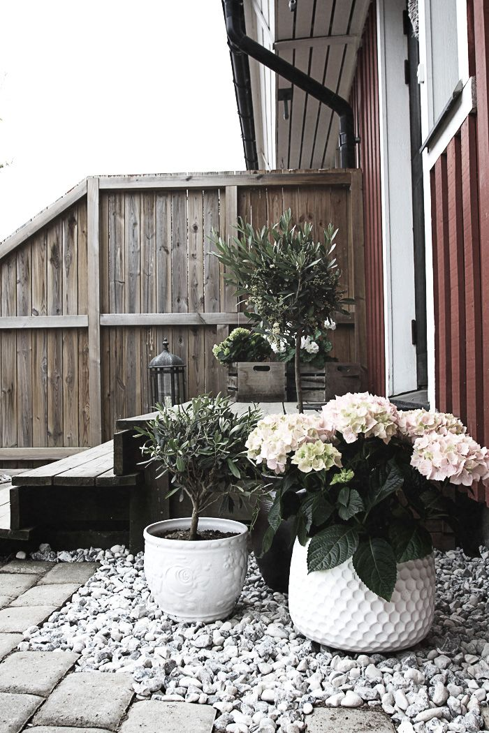 25 best ideas about courtyard entry on pinterest for Entry courtyard design ideas