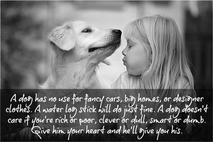 Quote by John Grogan, Marley & Me | dog lover | Pinterest ...  Quote by John G...