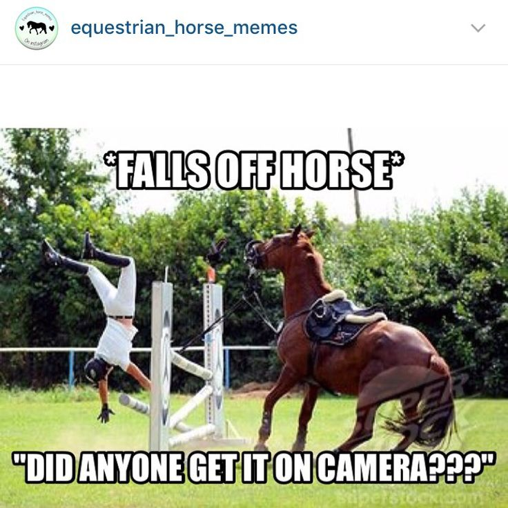 Follow @ equestrian_horse_memes on Instagram!
