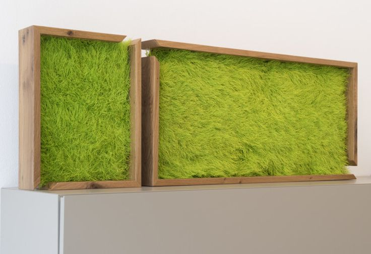 Your quiet green corner with Real Meadow framed with Ancient #recycled Oak #wood. It's Elle2: http://bit.ly/elle2-frame  #home #design #green #greendesign #flowerdesign #interiordesign #casa #decoration #decorazione #hotel #interiors #eco #oak #frame #greenwalls #grass #prato #verde