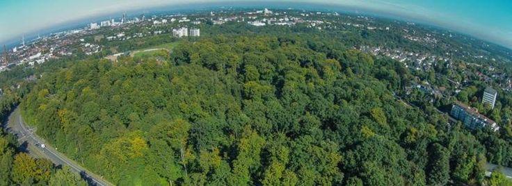 So sieht es aus, wenn der Multikopter samt Kamera über der Sportanlage Schillerwiese aufsteigt: Der Blick über Essen-Stadtwaldin Richtung Nord-Osten.