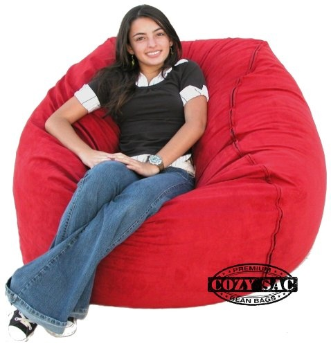 Most Unique Oversized Bean Bag Chairs