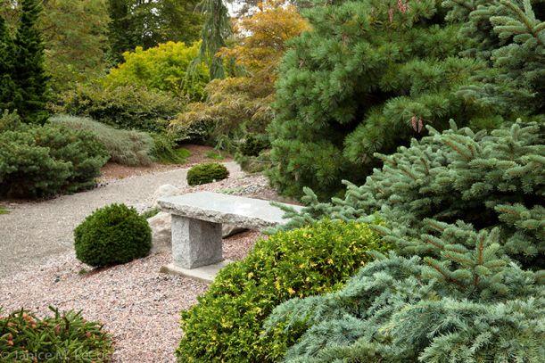 26 Best An Evergreen Of Interest Images On Pinterest Evergreen Arquitetura And Art