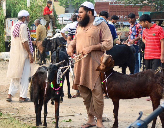 This Muslim Community Celebrated Eid With a Goat-Shaped Cake Instead of Slaughtering an Animal