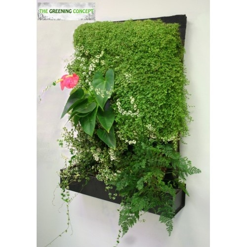 best-living-walls: Art Meets Science     I really like this solution from thegreeningconcept to easily install an indoor living wall.  + info: http://www.thegreeningconcept.com/product.php?id_product=11