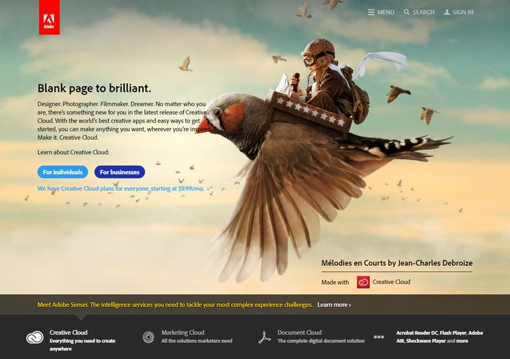 Adobe website 2016