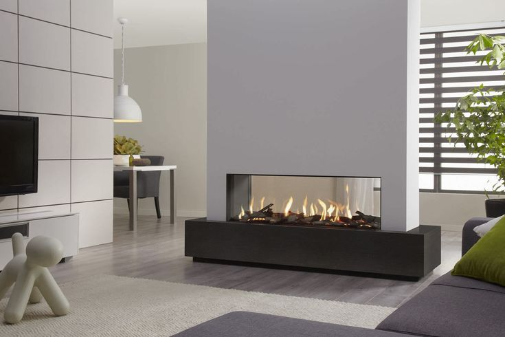 Image result for 2 way gas fireplace