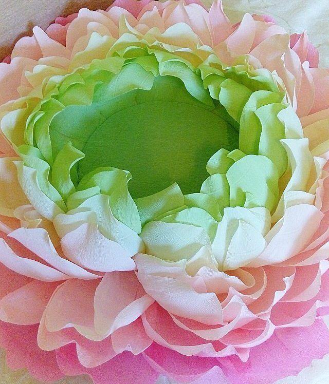 Я влюблена в это сочетание цветов  Еще один цветочек для фотосессии новорожденных и деток постарше.  А скоро представляю Вам ещё кое-что новенькое в этом цвете  #праздник#цветыминск#подарокминск#оригинальныйподарок #подарокдевочкам #чтоподаритьдевушке#бумажныйпион#мкцветыизбумаги#ростовойцветок#мкростовогоцветка#свитдизайн#sweetdesign#мксвитдизайн#мкпионизбумаги#цветокдляфотосессии#цветыдляфото#фотосессиямалышей#бумажныйпион#реквизитдляфотосессии