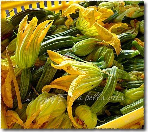 Fried Zucchini Blossoms / Fiori di Zucchini Fritti in Pastella - la bella vita cucina