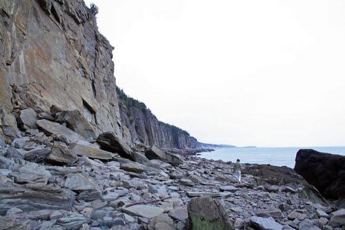 Fossil Cliff, Cape Enrage, New Brunswick, Canada