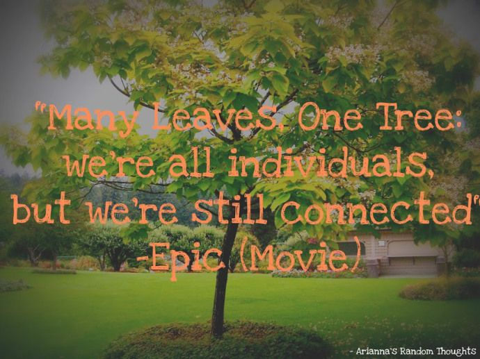 Many Leaves, One Tree. Quote from the movie Epic ...