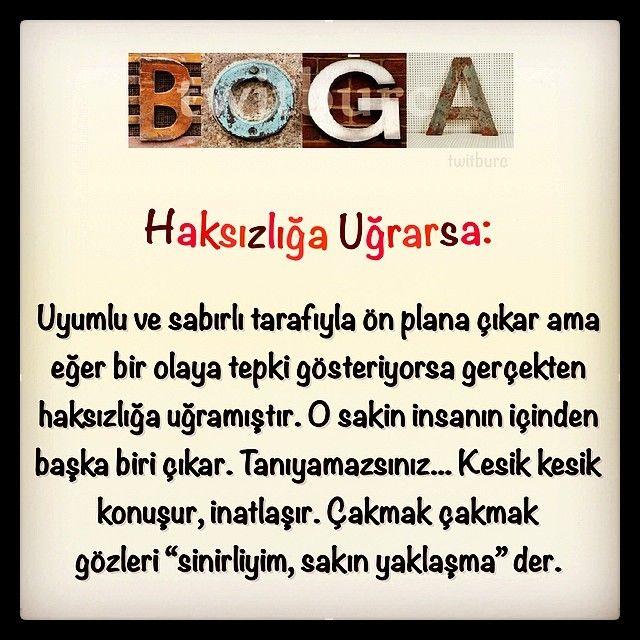 Zeynep Turan @twitburcc Instagram photos | Webstagram