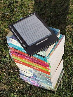 Dopo il lancio delle diverse edizioni del Kindle, il primo ereader commercializzato nel mondo (la versione con schermo ink, la versione a colori, la versione con retroilluminazione, ecc.) grazie al colosso Amazon, anche altre librerie online hanno deciso di seguire la scia di Amazon e proporre ereader marcati con il loro marchio o esclusivi.
