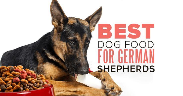 Best German Shepherd Puppy Food Uk